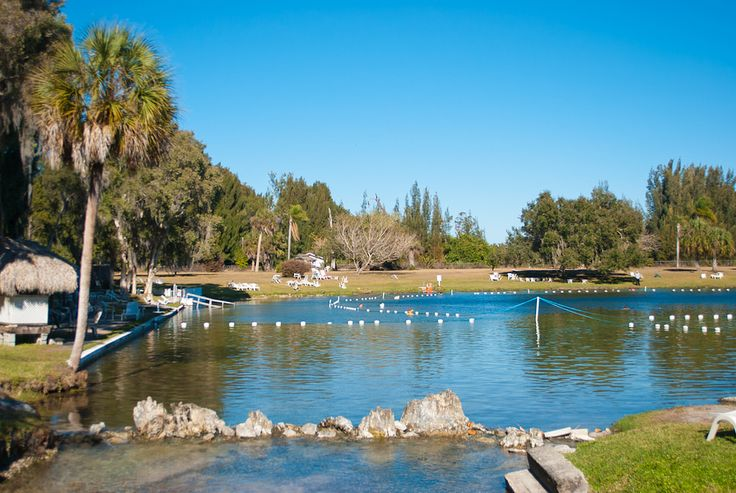 Warm Mineral Springs is a true hot spring, the only one in Florida open to the public. Located south of Venice, it is the largest natural mineral water spring in the world, covering 1.4 acres at depths up to 250 feet.