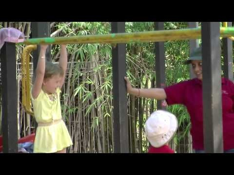 'Building upper body strength'... The delights of monkey bars-how do you provide children in your space with opportunities to build upper body strength? http://www.facebook.com/photo.php?v=454120917963226