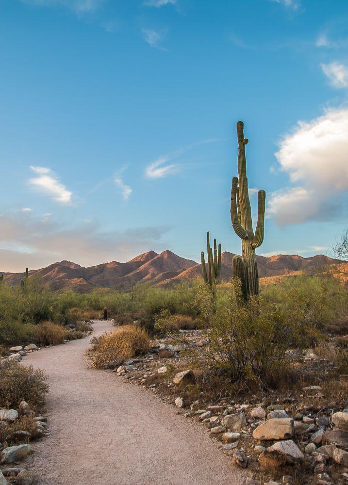 Outdoor Adventure in Phoenix, Arizona www.casualtravelist.com