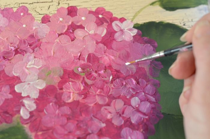Hometalk :: Learn to Paint Hydrangeas, Fast and Easy