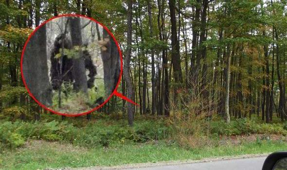 Are these amazing new images proof Bigfoot actually exists? Hiker snaps creature in woods