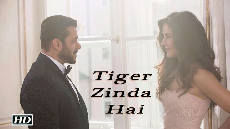 "Tiger Zinda Hai"" First Look 
