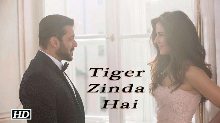 "Tiger Zinda Hai"" First Look | Salman- Katrina Hot Chemistry , http://bostondesiconnection.com/video/tiger_zinda_hai_first_look__salman-_katrina_hot_chemistry/,  #""EkThaTiger"" #AliAbbasZaffar #AnushkaSharma #christmas #india-pakistan #Iuliavantur #KabirKhan #KatrinaKaif #RanbirKapoor #rawagents #salmankatrina #SalmanKhan #salman'sgirlfriend #ShahRukhKhan #Sultan #tigerzindahai #tigerzindahaifirstlook #Tubelight"