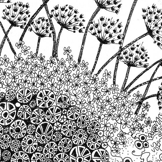 Love the Dandelions!  Fiona Willis (doodling artwork)