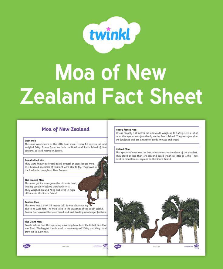Moa of New Zealand