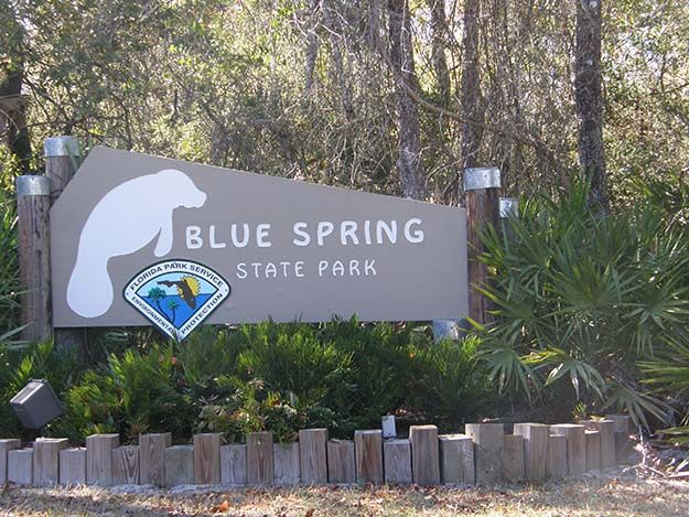Blue Spring State Park – Orange City | Best Campgrounds in Florida | Best Places To Go For Camping | Outdoor Activities by Survival Life at http://survivallife.com/best-campgrounds-in-florida/