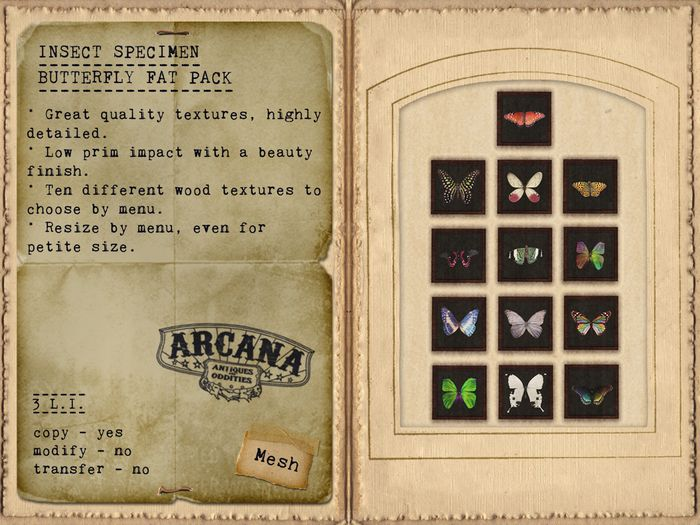 {A} Insect Specimen - Butterly Fat Pack