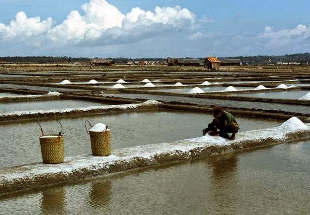 Proses Cara Pembuatan Garam Dapur | Pusat Biologi