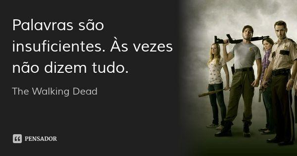 Palavras são insuficientes. Às vezes não dizem tudo. — The Walking Dead