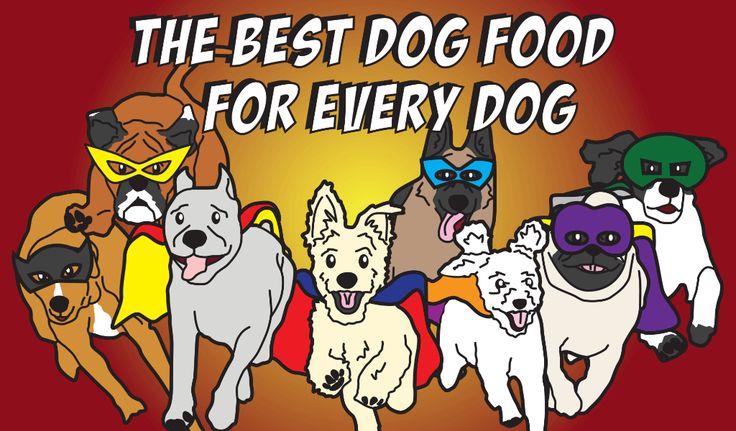 Best dog food for pancreatitis best dog food dog food