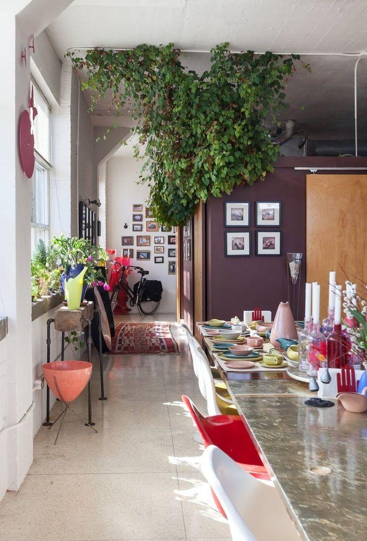 633 best Plant-Filled Homes images on Pinterest