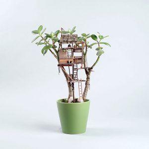 Avere una casa sull'albero è il sogno di tutti:al mondo ne esistono di meravigliose, da far sognare ad occhi aperti; in fondo costruirne una solida e sicura non è poi così difficile, ma spesso a mancare non èfantasia e buona volontà, m