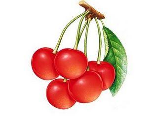 Imagens para Decoupagem: Imagens de Frutas para decoupage