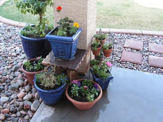 Container gardening is a fabulous hobby, especially great for older people. Container garden designs are ideal solutions for all who have back, hip or knee problems. Container garden design ideas allo
