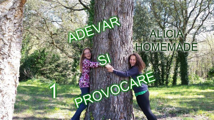 ADEVAR SI PROVOCARE #1 / Alicia Homemade