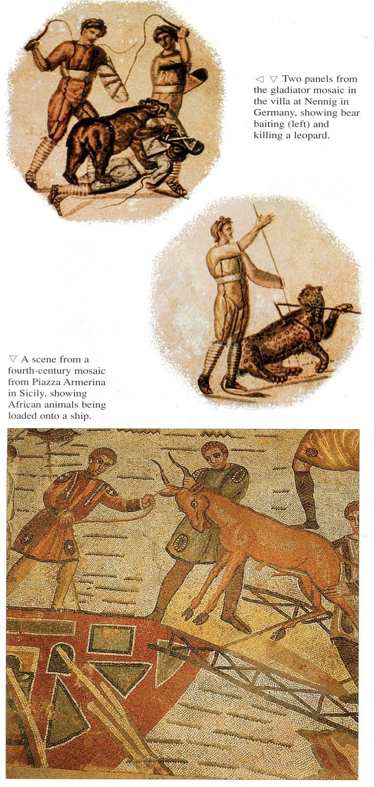 Mosaics showing animals in the arena (above) and being transported from abroad to Rome by ship (below)