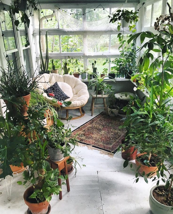 Un jardin d'hiver aménagé avec des plantes en pots et un fauteuil snug #decora…