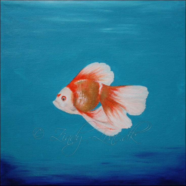 Gold Fish Painting by Zindy on @DeviantArt