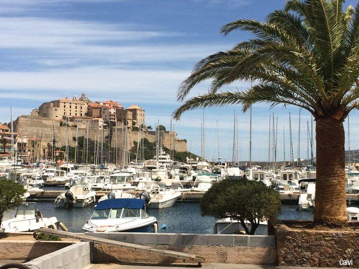 Port de Calvi en Corse - Roadtrip en Corse