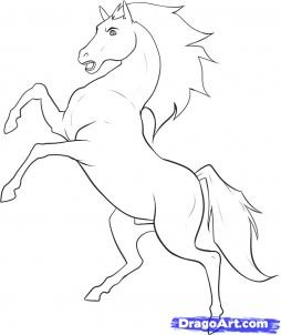 how to draw a stallion