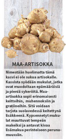 Maa-artisokka #satokausikalenteri #sesonkikasvikset #hedelmä #kiivi #artisokka #bataatti #vuonankaali #ananas #verigreippi