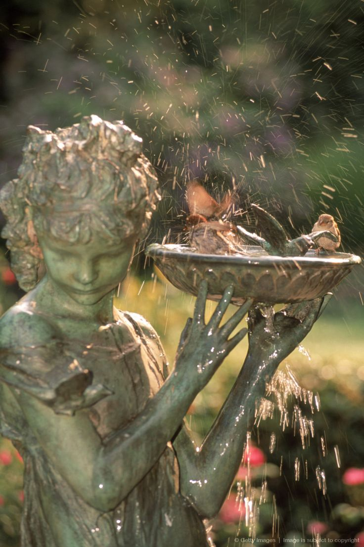 Hints of dusty rose in this gorgeous image detail for -Birdbath at Conservatory Gardens, NYC
