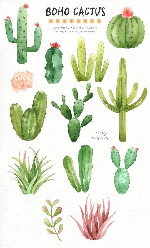 Cactus boho. Watercolor cliparts clipart botanical