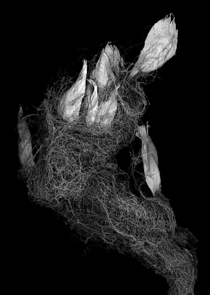 """Matsuura Tomoya, withered plant """"Unknown"""" — larghezza dell'immagine 7 mm"""