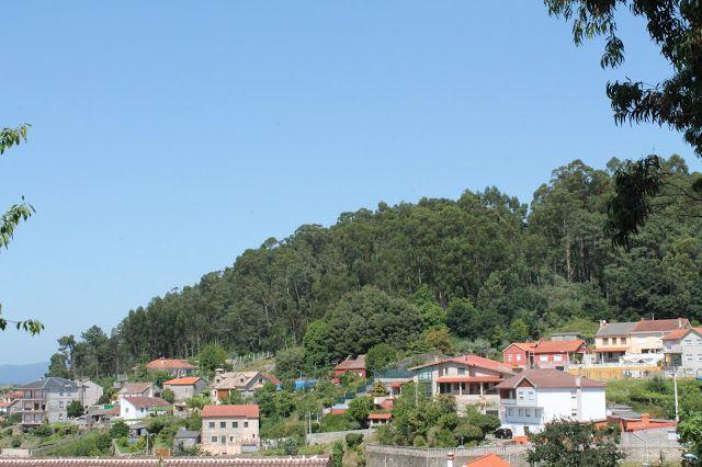 Sur de Mogor - Monte das Teixugueiras