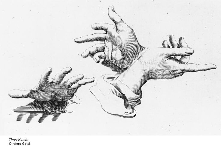 Contour Line Figure Drawing : Best contour drawing images on pinterest