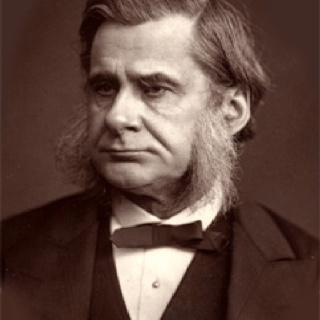 Thomas Henry Huxley (a.k.a. Darwin's bulldog). Naturalist, evolutionist, Darwin's most ardent defender.