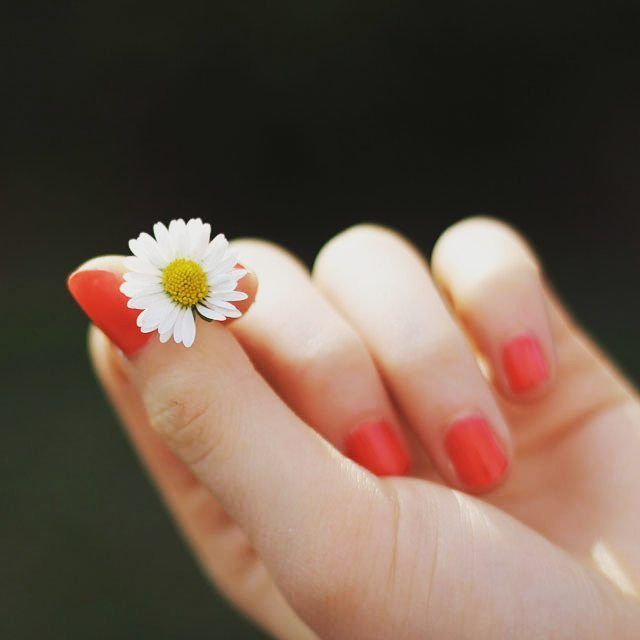 Biotin, a member of the Vitamin B family, has become a key ingredient in the cosmetic industry & is perfect for keeping your skin & nails looking great this spring  #biotin #vitamins #supplements #cosmetics #skincare #nails #nailcare #skin #spring #sun #weather #healthychoices #healthyliving #healthy