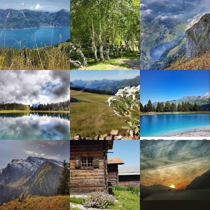 Ein Jahr mit der Schönheit der Natur direkt vor der Haustür. #bestnine2017 #dankbar #visitswitzerland #graubünden #arosalenzerheide #lenzerheide #outdoorliving #landscapelovers #exploringtheglobe #naturebeauty
