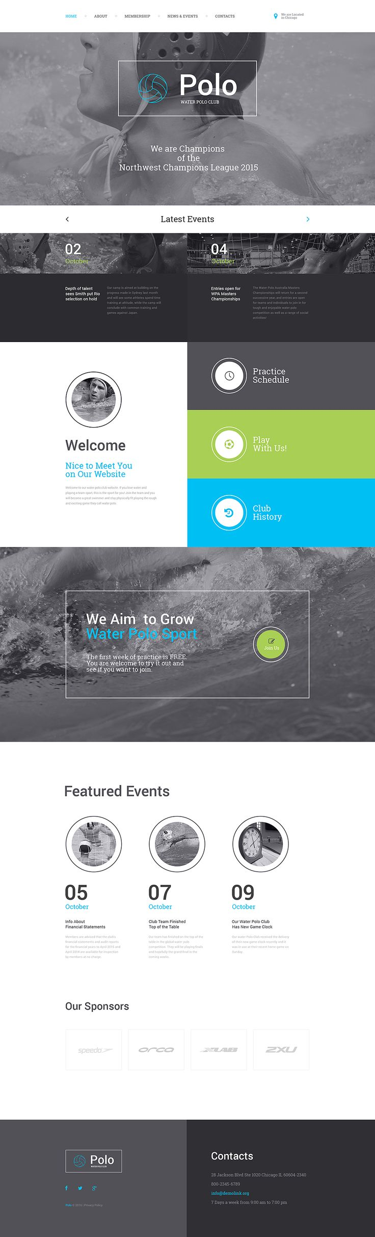 Polo Responsive Website Template #57568