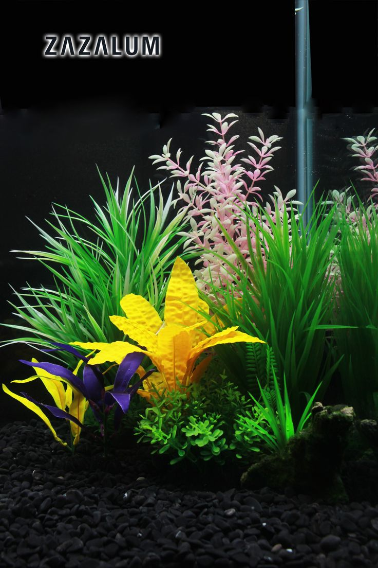 Dont Miss Those Amazing Artificial Fish Tank Water Glasses. Water GlassFish  TanksAquascapingAquariumsPlantFish ...