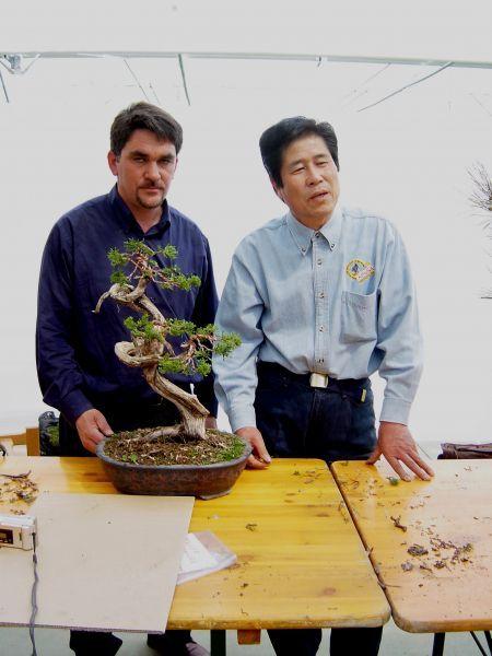 Cursos y talleres de formación y cultivo de Bonsais. Venta de bonsais y accesorios. Jaume Canals