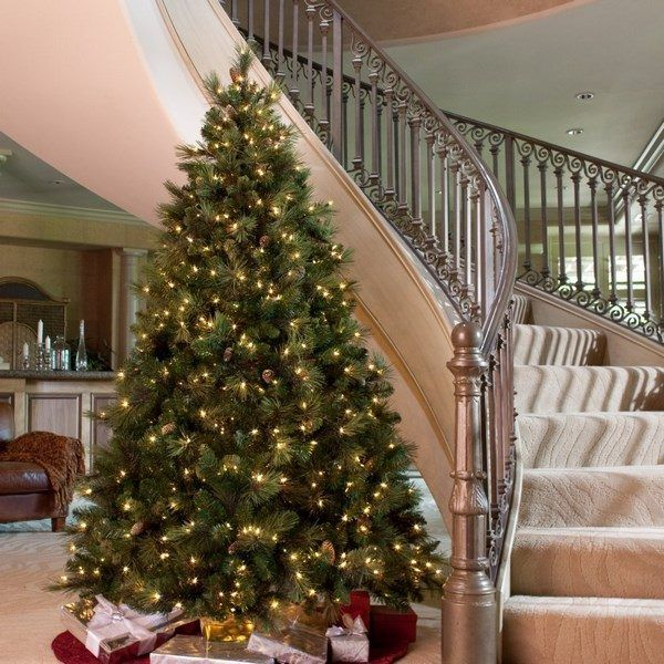Christmas Trees Without Ornaments 53 best christmas trees lakeland, fl images on pinterest