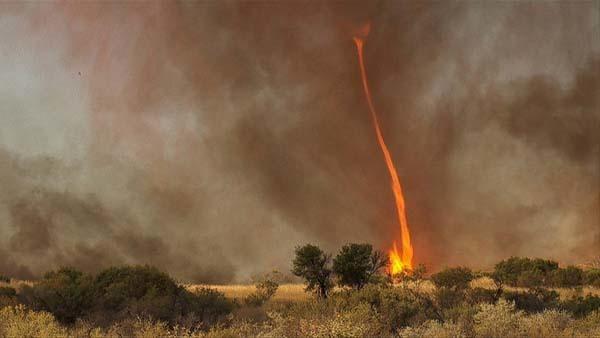 Vortici di fuoco: noti anche come demoni di fuoco, o tornado di fuoco, sono turbini di fiamme. Di solito si verificano quando intense condizioni di calore e di vento turbolento si combinano.