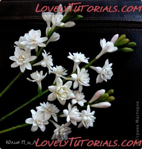 http://www.lovelytutorials.com/forum/showthread.php?s=4d3727dd32f0791cbc0a68eceb068968&t=5204