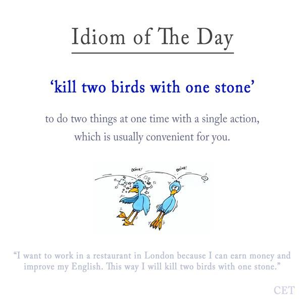 42 Best Idioms Images On Pinterest English Idioms English Phrases