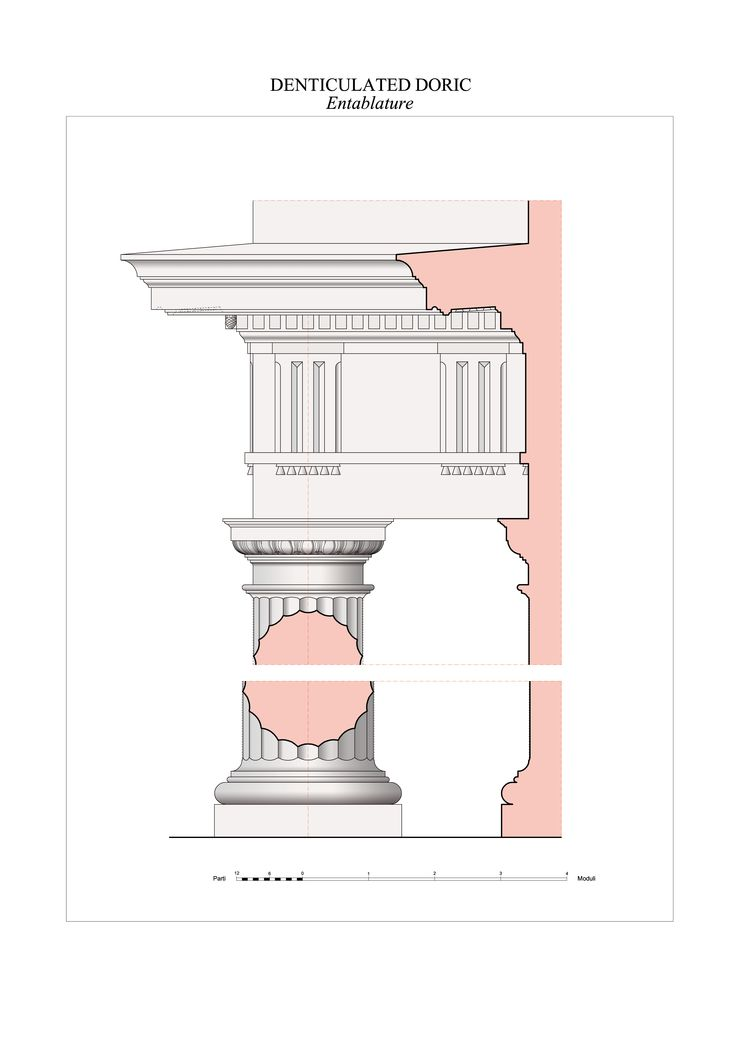 The doric order denticulated the five orders of for 5 orders of architecture