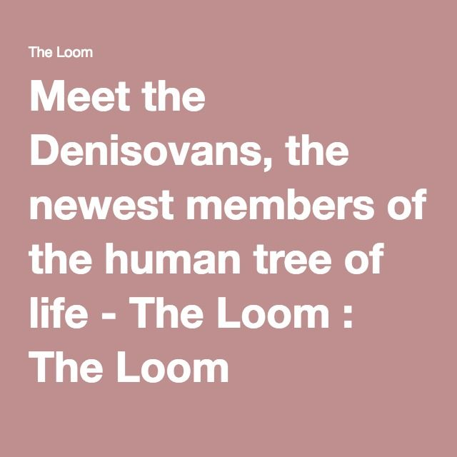 Meet the Denisovans, the newest members of the human tree of life - The Loom : The Loom