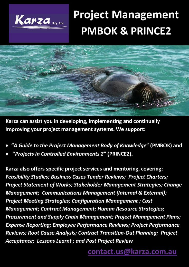 Karza can assist you in developing, implementing and continually improving your project management systems.