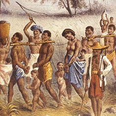Curiosidades da História do Brasil - Os primeiros escravos da África foram trazidos para o Brasil no ano de 1538. Até a assinatura da Lei Áurea, em 1888, entraram no país algo em torno de 15 milhões de escravos. | O TRECO CERTO