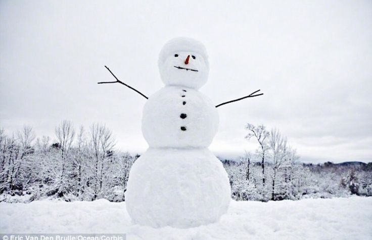 Image result for snowman aesthetic
