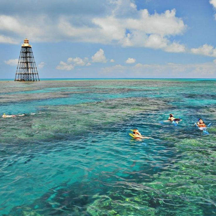 Key West Reef Snorkel - Afternoon