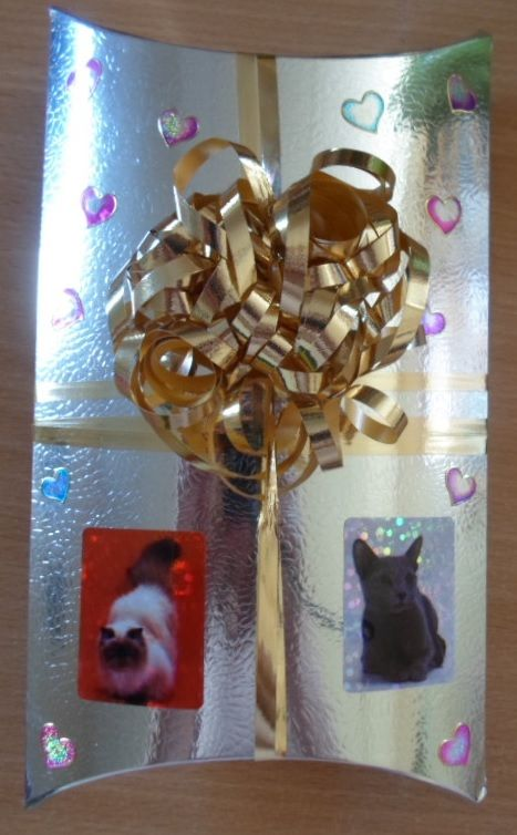 A present decorated with cats and hearts for my brother's wife.