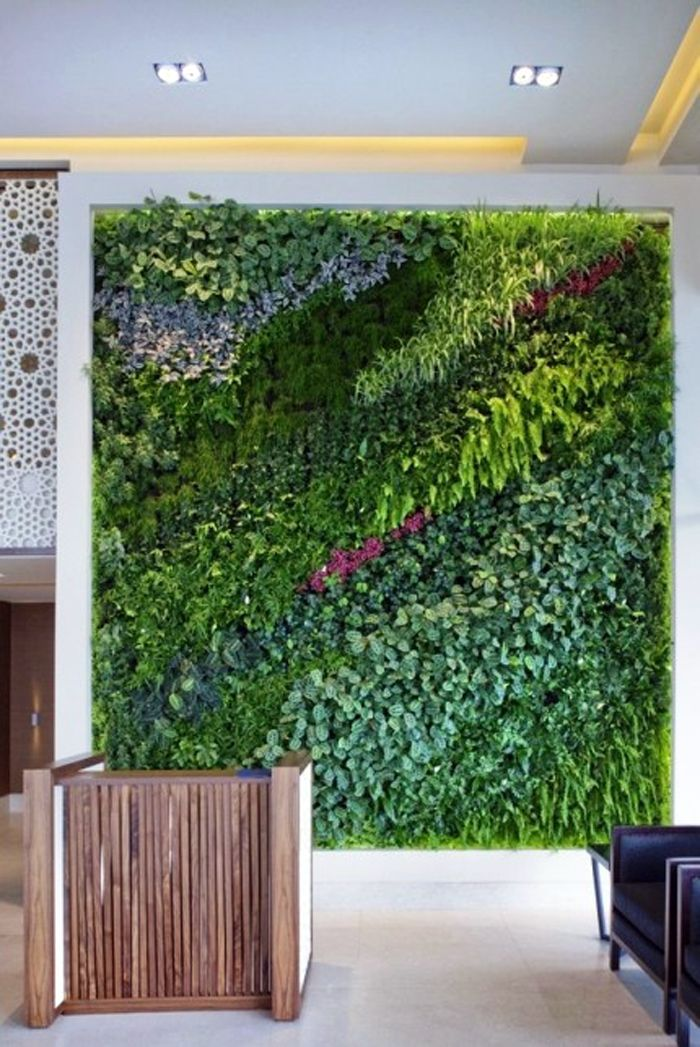 493 Best Green Walls Images On Pinterest