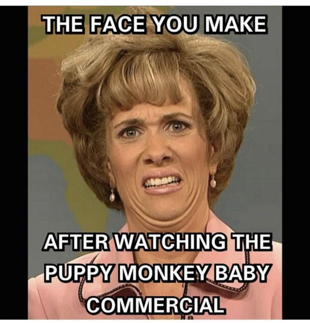 These Puppy Monkey Baby Memes Try To Make Sense Of Super Bowl 50's Strangest Commercial