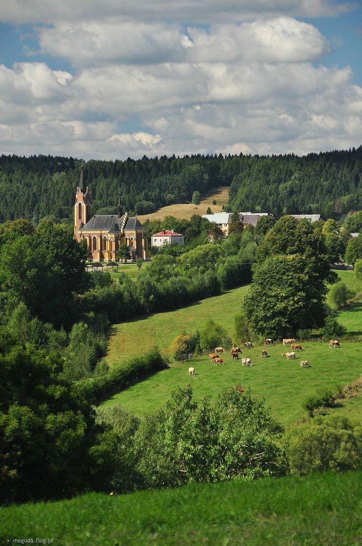 Lutowiska in August